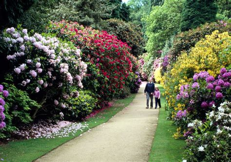 Hill Gardens by Hare Hill Gardens