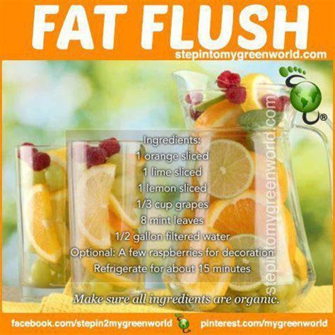 Freakys Detox by Embody More Light Recipe Organic Flush Fortified Water
