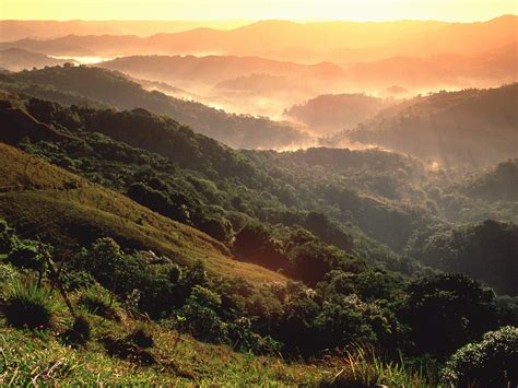 amazon america amazon rainforest america world for travel