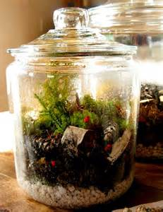 sealed bottle garden how to create a terrarium or vivarium or self contained bottle garden reeko s mad scientist lab