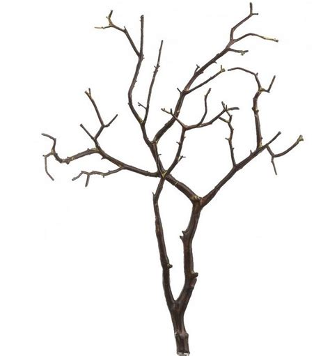 Small Room by Forcing Branches Reliablyuncomfortable
