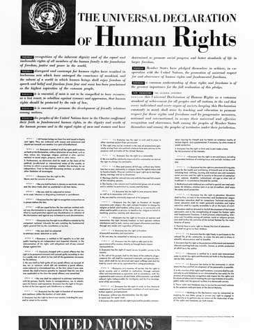 human rights sections universal declaration of human rights united nations