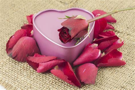 fiori san valentino come vivere la magia di san valentino floraqueen italia