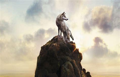 imagenes full hd de lobos el 250 ltimo lobo ubuntu life