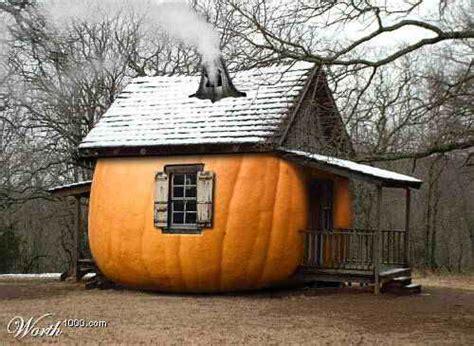 pumpkin house pumpkin houses live your fun