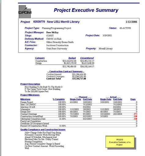 project executive summary project summaries dashboards