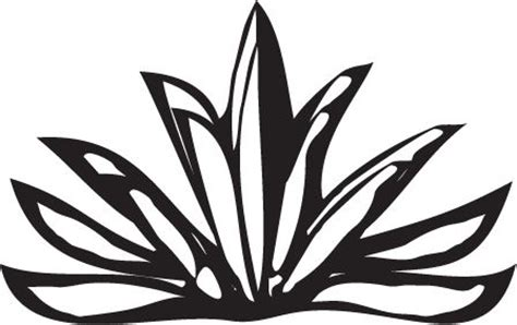tattoo tequila logo 12 best images about agave tattoo on pinterest