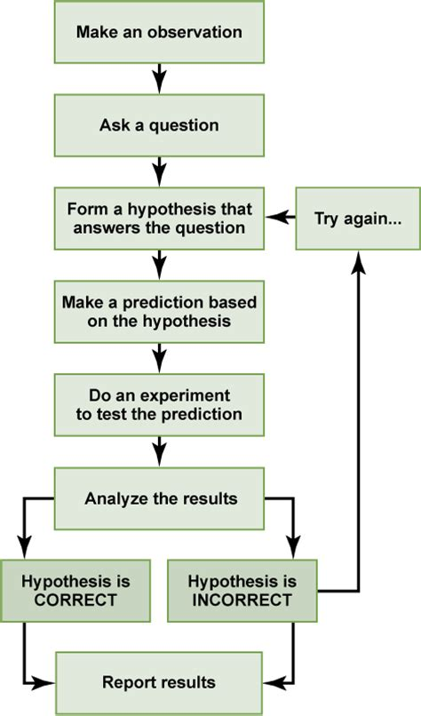 flowchart steps steps of scientific method flow chart images