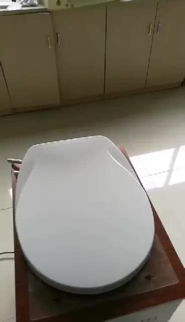 cold toilet seat cover toilet seat with cold water non electricity toilet bidet