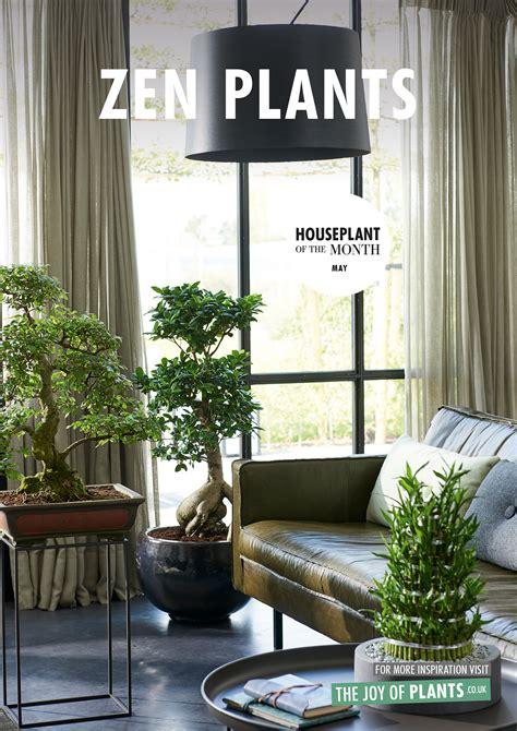 zen plants houseplants   month flower council
