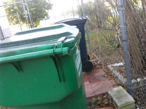 snake in the backyard snake in the backyard outdoor goods gogo papa