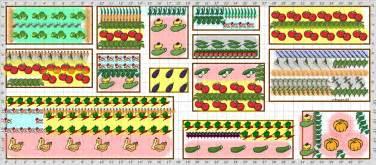 Planning A Vegetable Garden Layout Garden Plan 2013 Vegetable Garden