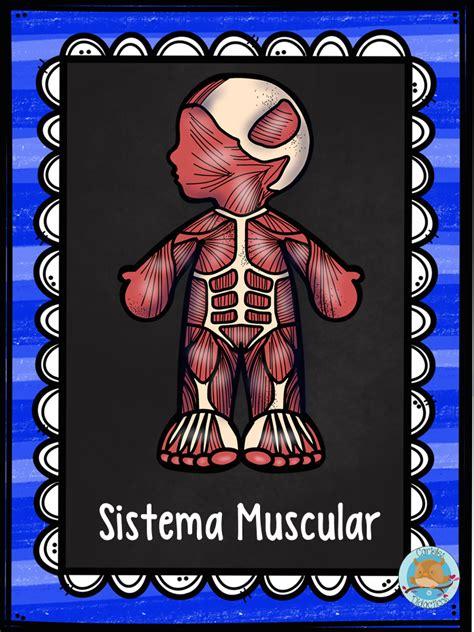 imagenes educativas cuerpo humano super l 225 minas sistemas del cuerpo primaria tambien en