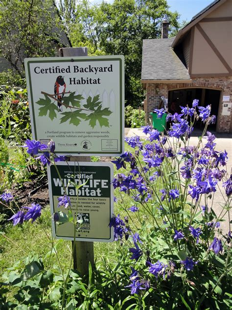 backyard habitat certification greatest gardens 171 backyard habitats