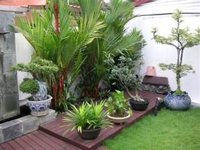 backyard bushes outdoor tropical plants for small garden design with dark wooden deck how to plan a