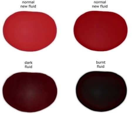 what color is transmission fluid how to check add automatic transmission fluid step by step
