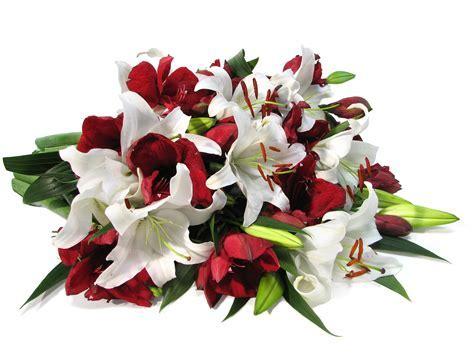 Season of Thanks   Flowerbud