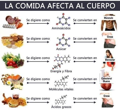 proteinas y grasas lista de alimentos con prote 237 nas y grasas infografia