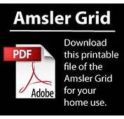 Click To Download Printable PDF  Of Amsler Grid