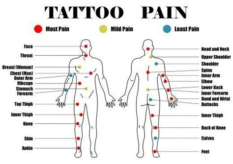 least painful spot to get a tattoo placement chart when you 39 re planning out