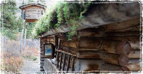 Log Cabin Documentary by Alone In The Wilderness