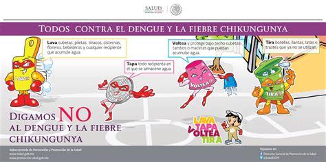 imagenes groseras sobre el chikungunya todo sobre chikungunya y dengue federaci 243 n mexicana de
