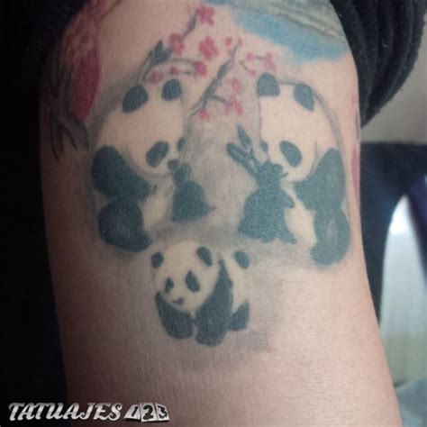 imagenes tatuajes de familia imagenes del oso pictures to pin on pinterest tattooskid