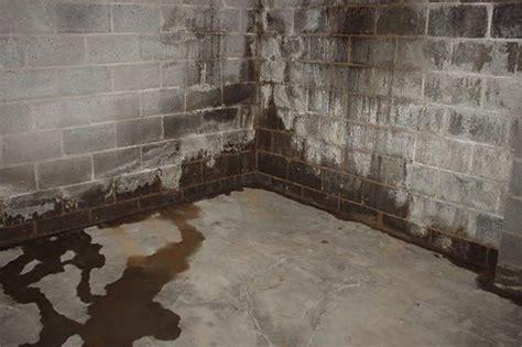 basement waterproofing toronto gta wet basement problems