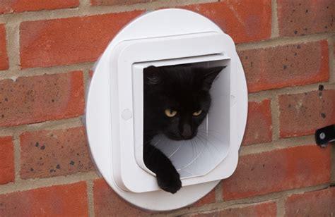 Installing A Cat Flap In A Glass Door Cat Flap Installation In A Brick Wall Top Cat Flaps