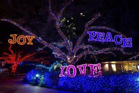 It S A Great Weekend In Houston For Pizza And Holiday Light Houston