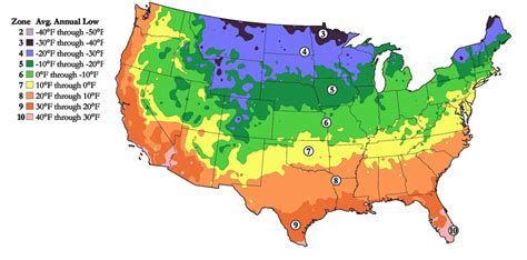 hardiness growing zones the planting tree