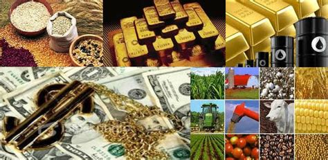 commodity exchange market commodities trading herbitone investments