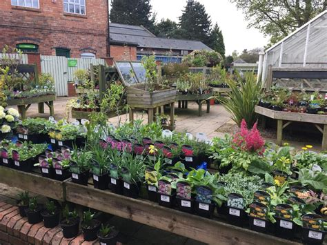 Plants For Sale Garden Shop Birmingham Botanical Gardens Botanical Garden Shop