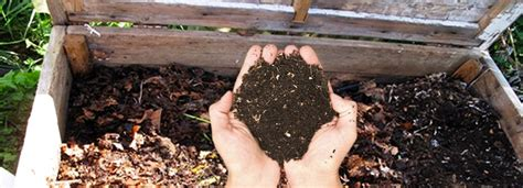 how to make a compost pile in your backyard how to make a compost pile in your backyard outdoor goods