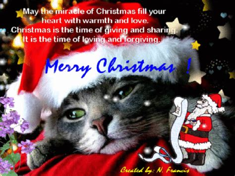 heart filled  warmth  love  merry christmas wishes ecards