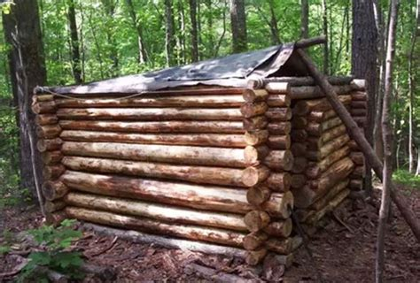 log cabin construction this small log cabin construction is impressive