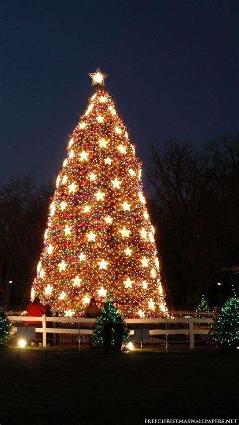 national christmas tree 480x854 wallpaper