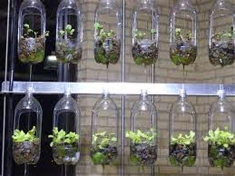 cara membuat hidroponik botol gantung 10 ide kreatif memanfaatkan botol air mineral bekas