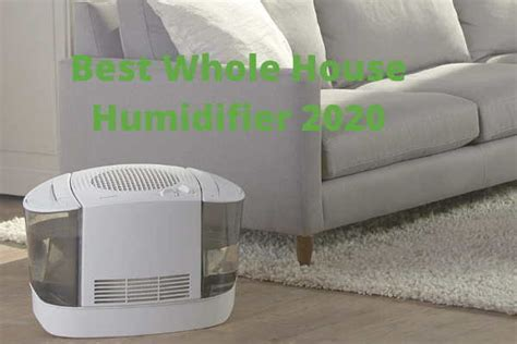 top    house humidifier  reviews  top pick