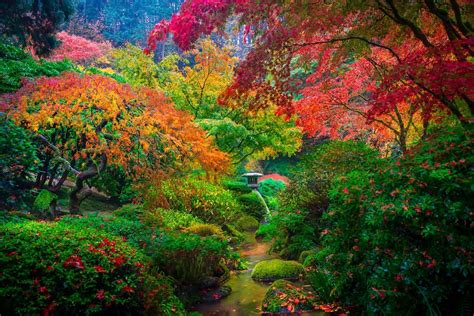 amazing garden amazing picture of a japanese garden in portland usa