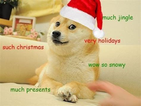 Doge Meme Christmas - such cheer christmas doge humor pinterest
