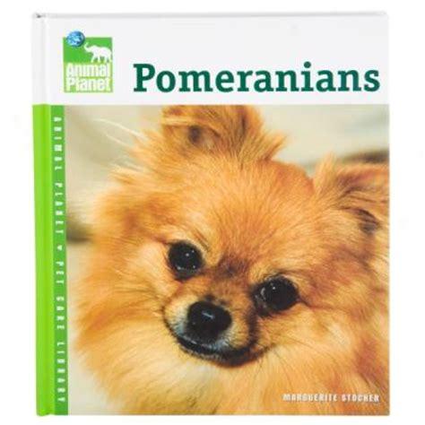 pomeranian animal planet zupreem fruitblend flavor premium food for medium to large birds pet supplies