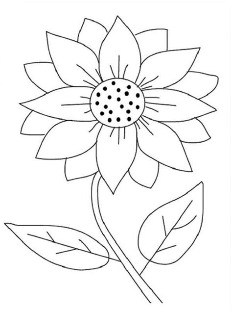 sunflower coloring pages preschool printable sunflower coloring page fun coloring pages
