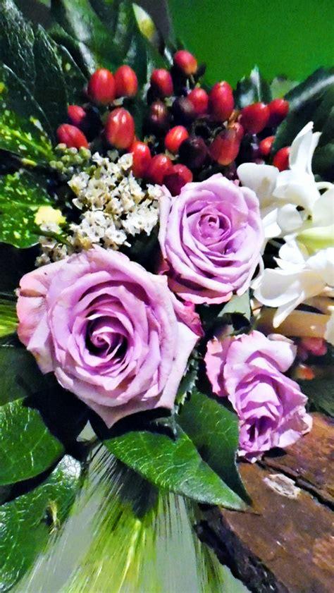 arte dei fiori arte dei fiori viventi foto immagini piante fiori e