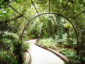 indoor gardens relaxing indoor garden design for supplying oxygen inside of your house