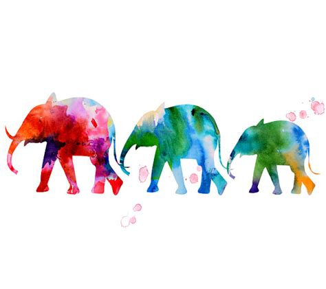 elephant watercolor animal watercolor painting by thenobleowl