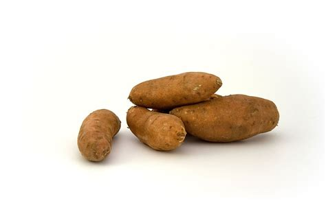 carbohydrates sweet potato healthy plan and 5 things you should fitibility