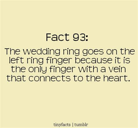 Wedding Facts by Wedding Facts Fact Of The Day