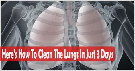 How To Detox Your Lungs After Quitting by How To Clean Your Lungs Easily In Just 3 Days