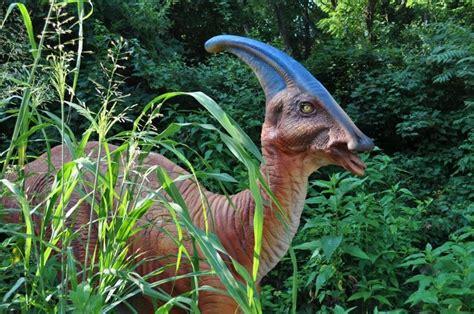 Kemben Hert woodland park zoo meet the dinosaurs